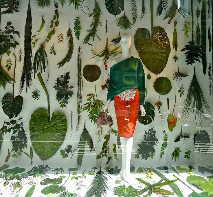 Escaparate con elementos botánicos